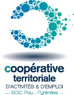 Logo CAE Pau Pyrenees