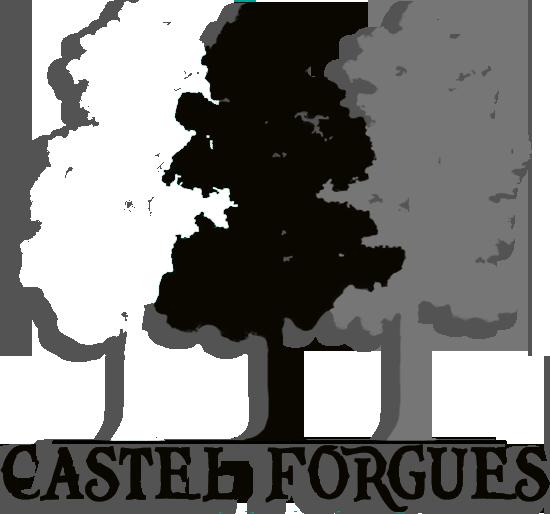 castel forgues